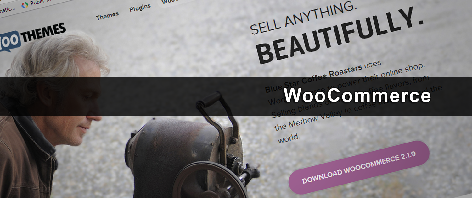 iDEAL voor WordPress & WooCommerce