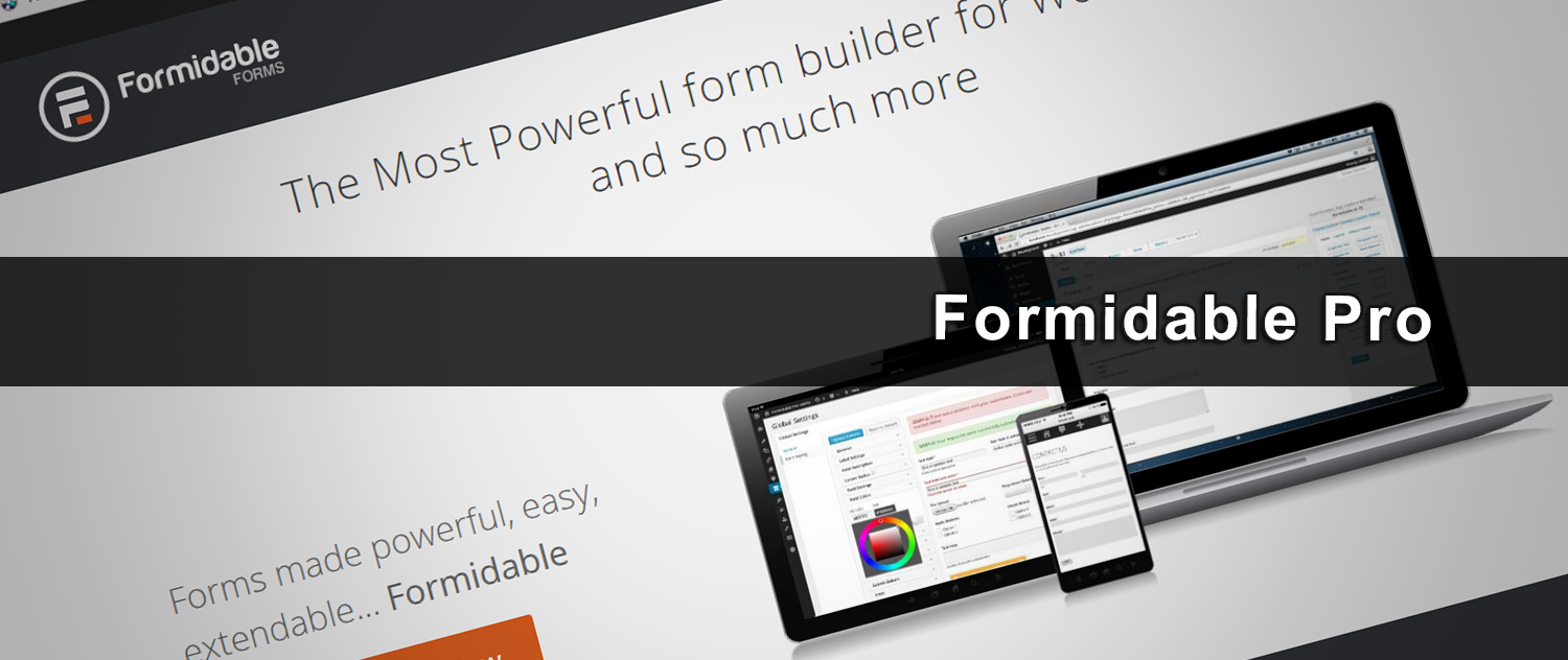 iDEAL voor Wordpress & Formidable Pro